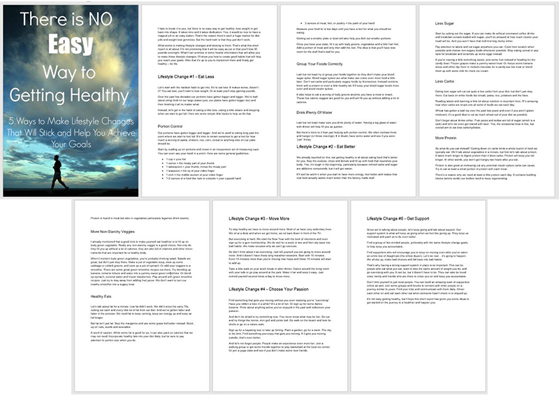 """A preview of the PLR report """"There's No Easy Way To Getting Healthy"""""""